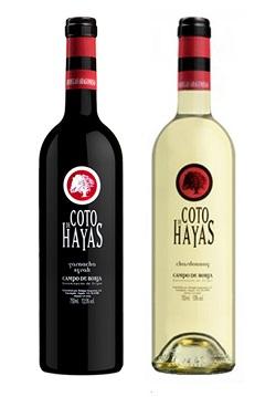 Rượu vang Coto de Hayas Tinto