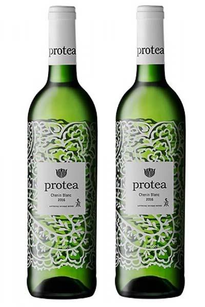Rượu vang Nam Phi Protea Chenin Blanc