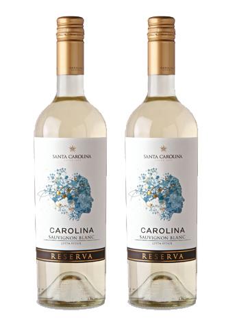 Rượu vang Chile Santa Carolina Carolina Sauvignon Blanc