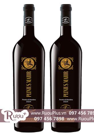 Rượu vang Ý Plinius Maior Primitivo di Manduria Riserva