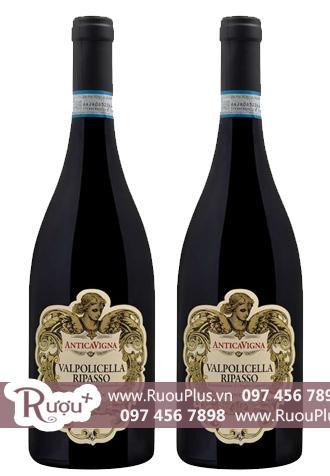 Rượu vang Ý Valpolicella Ripasso Superiore