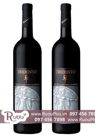 Rượu vang Ý Tridente Salento Rosso