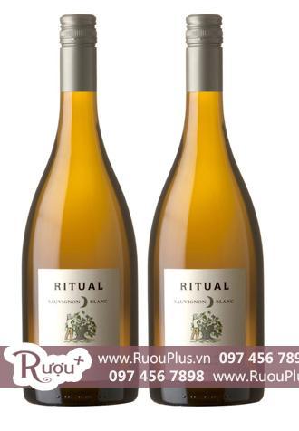 Rượu vang Chile Ritual Sauvignon Blanc